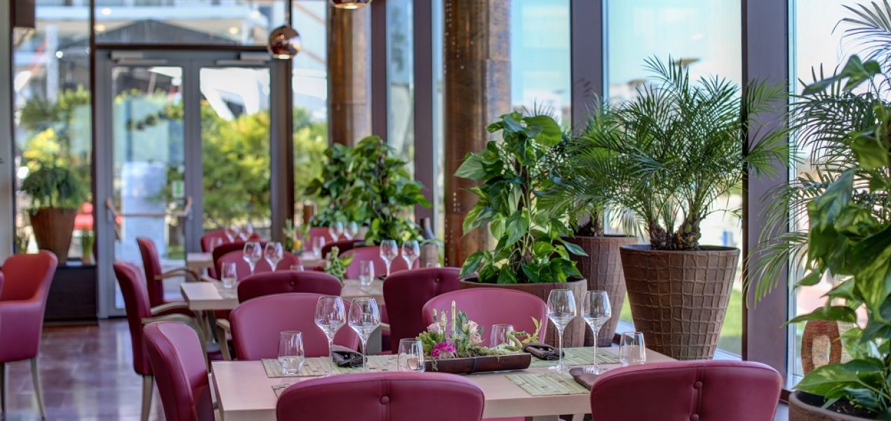 restaurant-mamaia-constanta-shanti